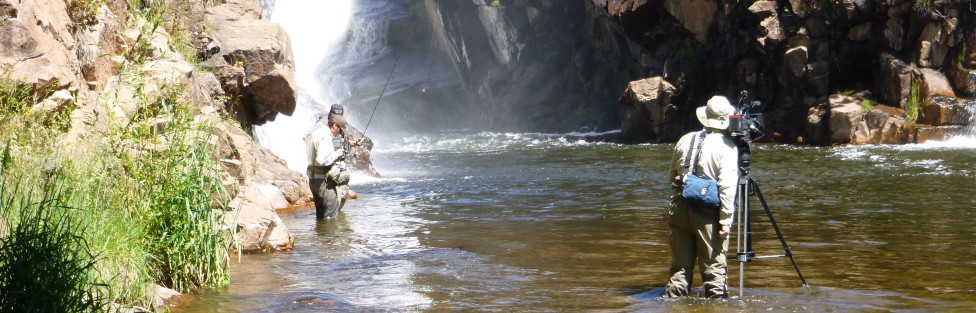 T.V. Show Guide Trip with Brent Cannon's Fly Fishing West 6/26A.M.